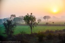 Sunrise from the Train heading to Agra, india